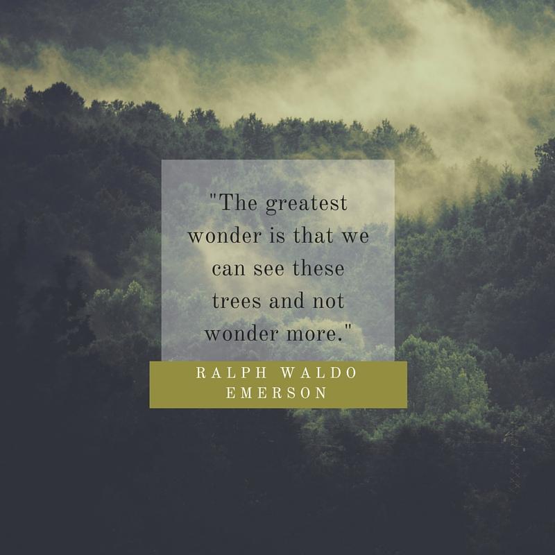 Emerson quote