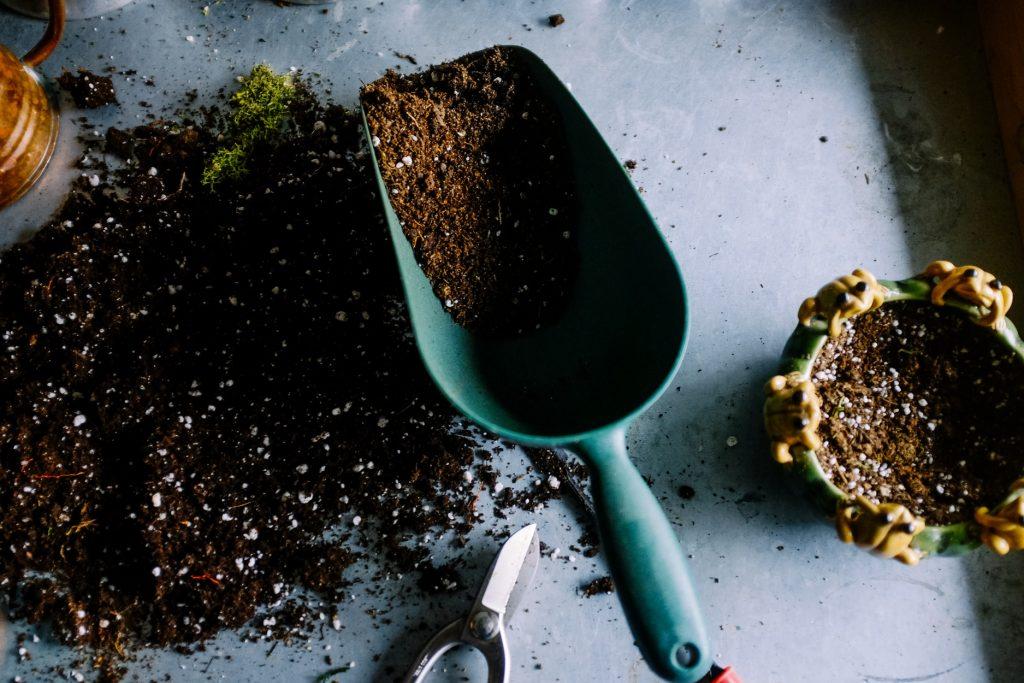 nutrients in the soil